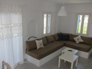 Nice 3 bedroom Condo in Piso Livadi - Piso Livadi vacation rentals