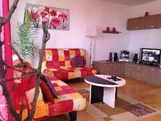 Brasov Sweet Retreat-Apartment Marius - Brasov vacation rentals
