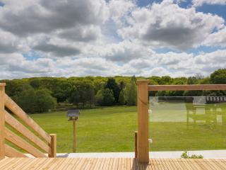 Honeysuckle Cottage - Holsworthy vacation rentals