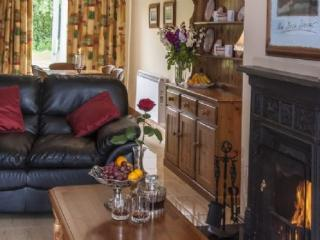 Cozy 3 bedroom Cottage in Killarney with Satellite Or Cable TV - Killarney vacation rentals