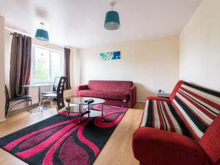 BEAUTIFUL 1 BEDROOM APARTMENT WITH WI FI,SLEEPS 4 - London vacation rentals