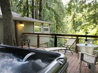 Spacious 4 bedroom House in Guerneville with Television - Guerneville vacation rentals