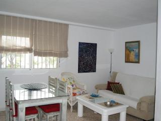 Apartment in Conil, Cadiz 100447 - Conil de la Frontera vacation rentals