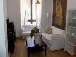 Apartment in Málaga 101021 - Malaga vacation rentals