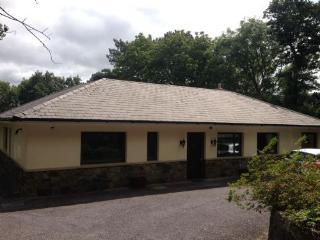 Ros Dearg,Caragh Lake, Killorglin Co Kerry - 2 Bed - Killorglin vacation rentals