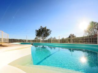 Villa in Silves, Algarve, Portugal 102055 - Algoz vacation rentals