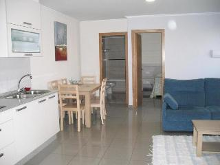 Apartment in S. O Grove, Pontevedra, 102211 - San Vicente del Mar vacation rentals