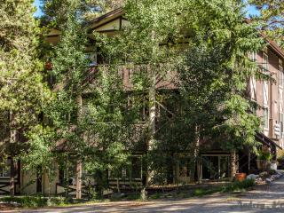 Family Friendly Mountain Condo On Ground Floor - Breckenridge vacation rentals