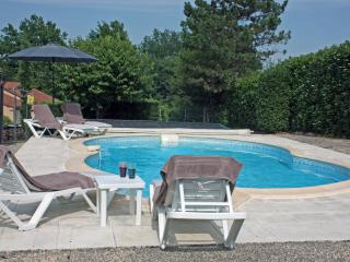 Spectacular view of medieval village with pool - Puy-l Eveque vacation rentals