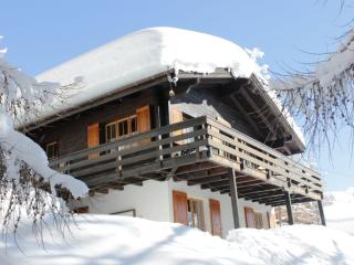 Nice 4 bedroom Chalet in Bellwald with Deck - Bellwald vacation rentals
