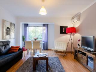 Central nice apartment in el Ensanche (B31P1) - Barcelona vacation rentals