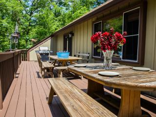 Huge Comfy 3000sqf Creek Front - Fireplace/ Fire Pit, BBQ, indoor pool / hot tub - Bushkill vacation rentals