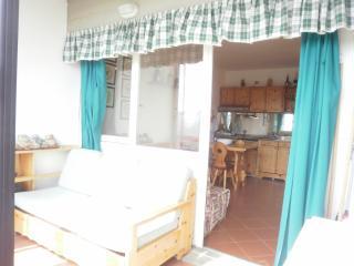 PRATO NEVOSO Monolocale con solarium e vista monti - Prato Nevoso vacation rentals