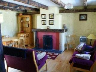 Beautiful Cottage with Internet Access and Dishwasher - Kilkenny vacation rentals