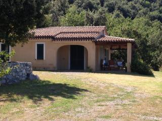Nice Villa with Television and Microwave - Cersuta vacation rentals