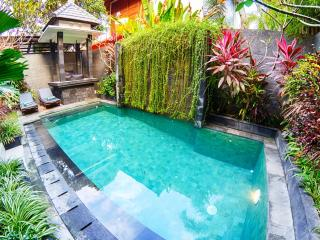 Beautiful 3bdr villa with private pool in Seminyak - Seminyak vacation rentals