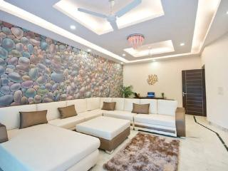 3Bed Lush Green Apt in the heart of South Delhi - New Delhi vacation rentals