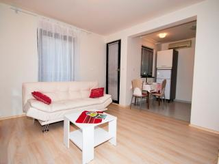 Great location-city centar Pula - Pula vacation rentals