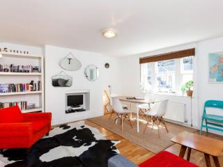 Designer Central London Home w/WIFI - London vacation rentals