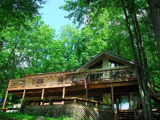Beautiful 4 Bedroom Lakefront home with hot tub and private dock! - Oakland vacation rentals