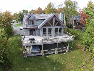 Fabulous 4 Bedroom luxury ski in/ ski out home with hot tub! - McHenry vacation rentals