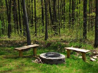 Elegant & Stylish 3 Bedroom Log Cabin with bubbling outdoor hot tub! - McHenry vacation rentals