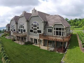 Lavish 5 bedroom townhome with spectacular lake views! - McHenry vacation rentals