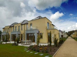 Waterford Castle Lodges, The Island, Co.Waterford - Waterford vacation rentals