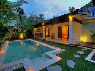 2 Bedroom Villa Close to BEACH - Seminyak vacation rentals