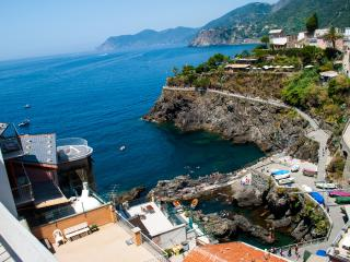 Wonderful 1 bedroom Apartment in Manarola with Television - Manarola vacation rentals