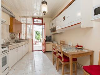 Historical Triplex@city center - Istanbul vacation rentals