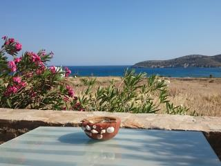 Antiparos luxury apartment 1 - Agios Georgios vacation rentals
