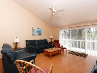 1735 Kennington Rd - Encinitas vacation rentals