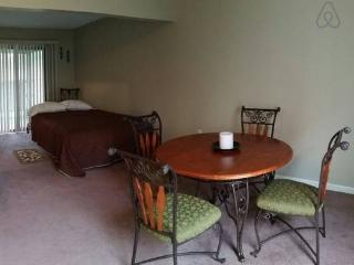 Cajun Studio South - Lafayette vacation rentals