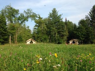 GLAMP SUZANNE ON PRETTY ADIRONDACK FARM - North River vacation rentals