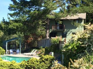 Lovely House with Deck and Internet Access - Sebastopol vacation rentals