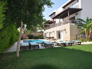 Villa Celebi C - Torba vacation rentals