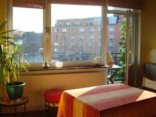 Cosy apartment with one bedroom and balcony - Saint-Gilles vacation rentals