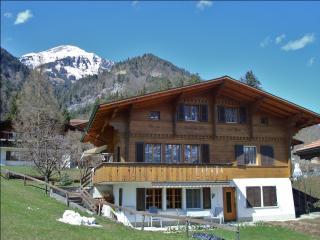 Ferienwohnung Berner Oberland - Reichenbach vacation rentals
