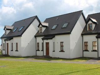 Hookless Hoilday Homes - Executive Seaview House - Fethard On Sea vacation rentals