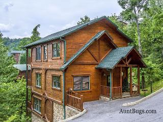 Papa Bear's Den is a quiet cabin just 2.5 miles from downtown Gatlinburg - Gatlinburg vacation rentals