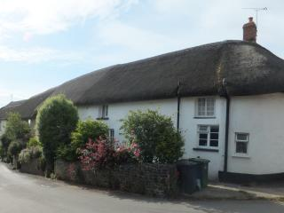 Beautiful 15th Century Devon Holiday Cottage - Witheridge vacation rentals