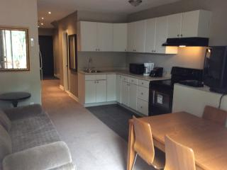 Entire Suite in Downtown - Toronto vacation rentals