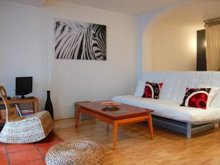 Nice Studio with Internet Access and Television - Vitoria-Gasteiz vacation rentals