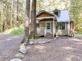 Beautiful dog-friendly chalet with private hot tub, fire pit, & mountain views! - Rhododendron vacation rentals