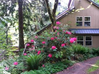 Unique dog-friendly mountain home w/private hot tub & sauna!Only 6 min. to town! - Welches vacation rentals