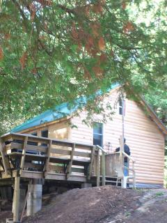 Beautiful Cottage with Internet Access and Short Breaks Allowed - Cloyne vacation rentals