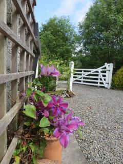Cottage Newly Renovated, Large Garden with Stream - Knock vacation rentals