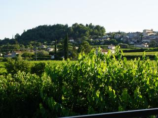 Maison en pierre, hameau de Garidel - Saint-Julien-de-Peyrolas vacation rentals