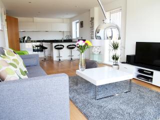 Bright 2 bedroom Newquay Condo with Internet Access - Newquay vacation rentals